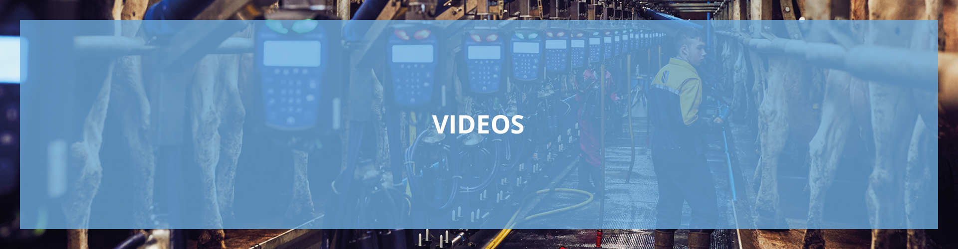 main video light blue banner dutch 1920x500px
